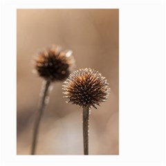 Withered Globe Thistle In Autumn Macro Large Garden Flag (two Sides) by wsfcow