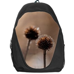 Withered Globe Thistle In Autumn Macro Backpack Bag by wsfcow