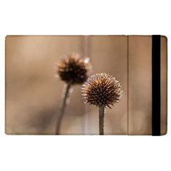 Withered Globe Thistle In Autumn Macro Apple Ipad 2 Flip Case by wsfcow