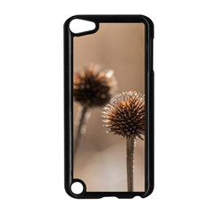 Withered Globe Thistle In Autumn Macro Apple Ipod Touch 5 Case (black) by wsfcow