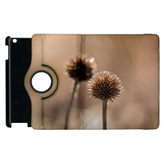 Withered Globe Thistle In Autumn Macro Apple Ipad 2 Flip 360 Case by wsfcow