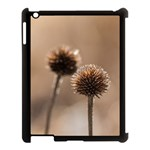 Withered Globe Thistle In Autumn Macro Apple iPad 3/4 Case (Black) Front