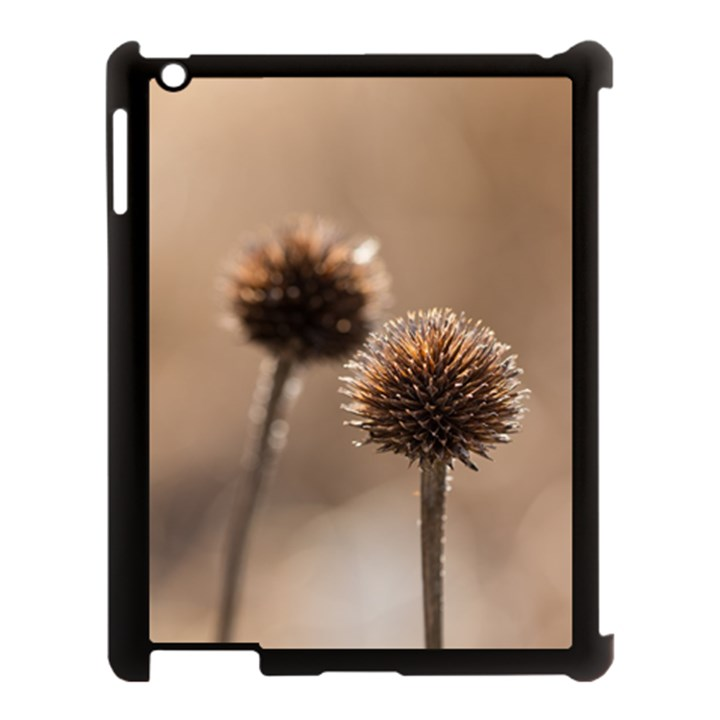 Withered Globe Thistle In Autumn Macro Apple iPad 3/4 Case (Black)