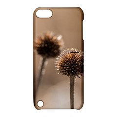 Withered Globe Thistle In Autumn Macro Apple Ipod Touch 5 Hardshell Case With Stand by wsfcow