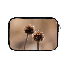 Withered Globe Thistle In Autumn Macro Apple Ipad Mini Zipper Cases by wsfcow