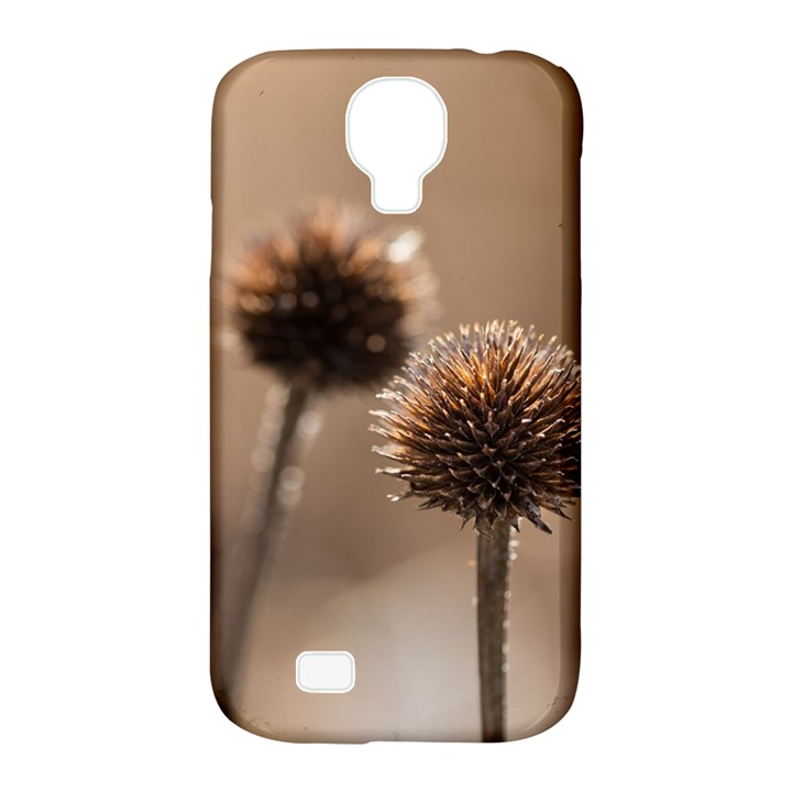 Withered Globe Thistle In Autumn Macro Samsung Galaxy S4 Classic Hardshell Case (PC+Silicone)