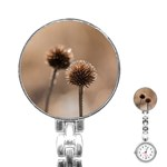 Withered Globe Thistle In Autumn Macro Stainless Steel Nurses Watch Front