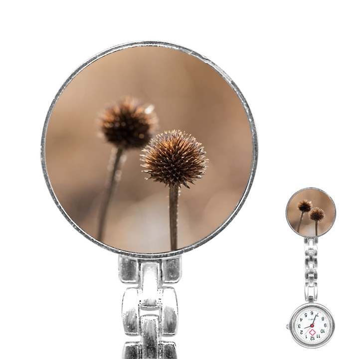 Withered Globe Thistle In Autumn Macro Stainless Steel Nurses Watch