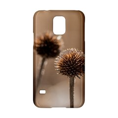 Withered Globe Thistle In Autumn Macro Samsung Galaxy S5 Hardshell Case  by wsfcow