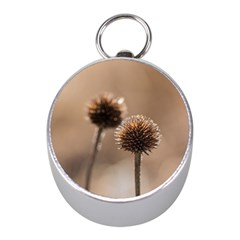 Withered Globe Thistle In Autumn Macro Mini Silver Compasses by wsfcow