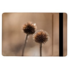 Withered Globe Thistle In Autumn Macro Ipad Air Flip by wsfcow