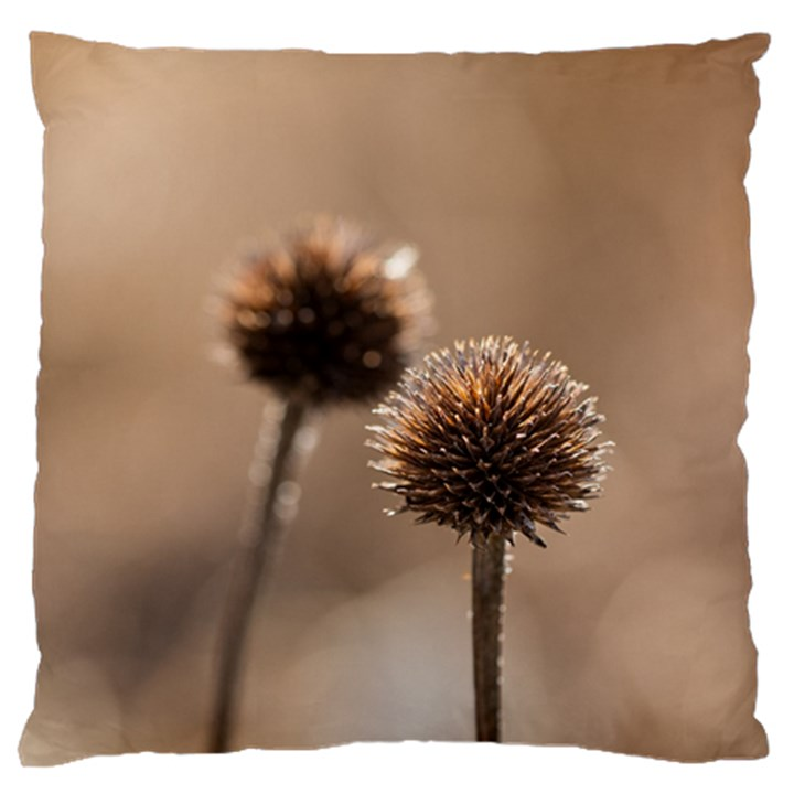 Withered Globe Thistle In Autumn Macro Large Flano Cushion Case (One Side)