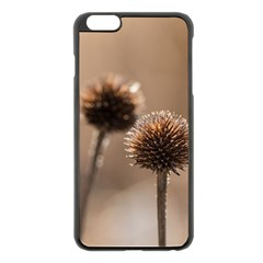 Withered Globe Thistle In Autumn Macro Apple Iphone 6 Plus/6s Plus Black Enamel Case by wsfcow