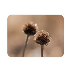 Withered Globe Thistle In Autumn Macro Double Sided Flano Blanket (mini)  by wsfcow