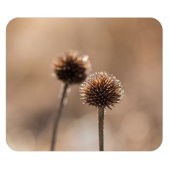 Withered Globe Thistle In Autumn Macro Double Sided Flano Blanket (small)  by wsfcow