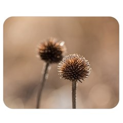 Withered Globe Thistle In Autumn Macro Double Sided Flano Blanket (medium)  by wsfcow