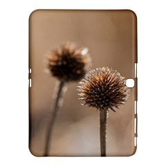 Withered Globe Thistle In Autumn Macro Samsung Galaxy Tab 4 (10 1 ) Hardshell Case  by wsfcow