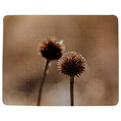 Withered Globe Thistle In Autumn Macro Jigsaw Puzzle Photo Stand (rectangular) by wsfcow