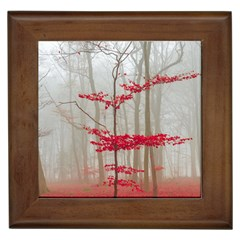 Magic Forest In Red And White Framed Tiles