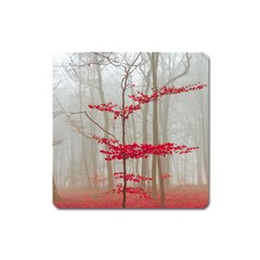 Magic Forest In Red And White Square Magnet