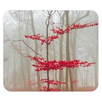 Magic Forest In Red And White Double Sided Flano Blanket (Small)  50 x40  Blanket Back
