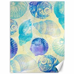 Seashells Canvas 36  X 48   by DanaeStudio