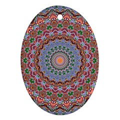 Abstract Painting Mandala Salmon Blue Green Oval Ornament (two Sides) by EDDArt
