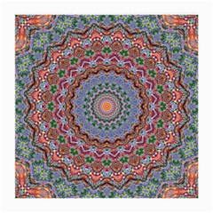 Abstract Painting Mandala Salmon Blue Green Medium Glasses Cloth (2 Side) by EDDArt