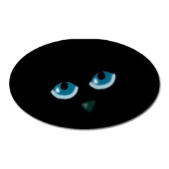 Halloween   Black Cat   Blue Eyes Oval Magnet by Valentinaart