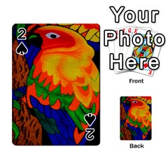 Parakeet Colorful Bird Animal Playing Cards 54 Designs  by AnjaniArt