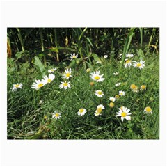 White Daisy Flowers Collage Prints by picsaspassion