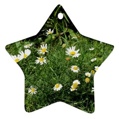 White Daisy Flowers Star Ornament (two Sides)  by picsaspassion