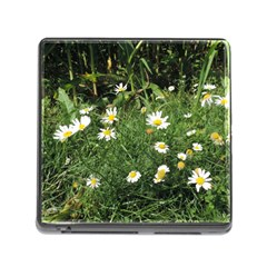 White Daisy Flowers Memory Card Reader (square) by picsaspassion