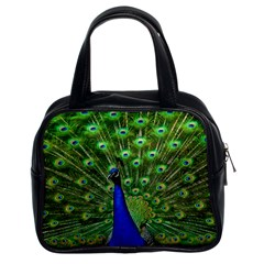 Bird Peacock Classic Handbags (2 Sides) by AnjaniArt