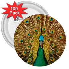 Bird Peacock Feathers 3  Buttons (100 Pack)