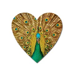 Bird Peacock Feathers Heart Magnet by AnjaniArt