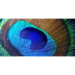 Blue Peacock You Are Invited 3d Greeting Card (8x4) by AnjaniArt