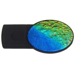 Blue Peacock Feathers Usb Flash Drive Oval (4 Gb)