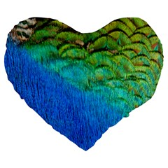 Blue Peacock Feathers Large 19  Premium Heart Shape Cushions