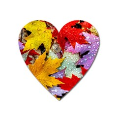 Coloorfull Leave Heart Magnet by AnjaniArt