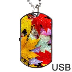 Coloorfull Leave Dog Tag Usb Flash (two Sides)