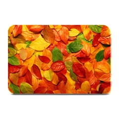 Colorful Fall Leaves Plate Mats by AnjaniArt