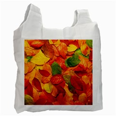 Colorful Fall Leaves Recycle Bag (one Side) by AnjaniArt