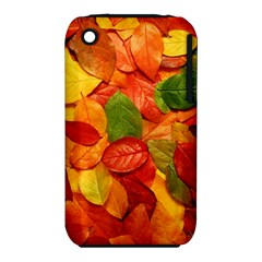 Colorful Fall Leaves Apple Iphone 3g/3gs Hardshell Case (pc+silicone)