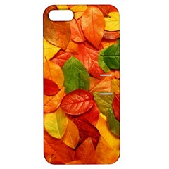 Colorful Fall Leaves Apple Iphone 5 Hardshell Case With Stand