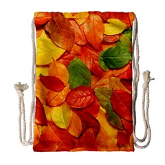 Colorful Fall Leaves Drawstring Bag (large) by AnjaniArt