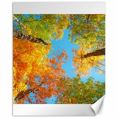 Colorful Leaves Sky Canvas 11  X 14   by AnjaniArt