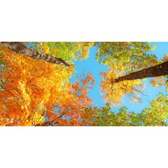 Colorful Leaves Sky You Are Invited 3d Greeting Card (8x4) by AnjaniArt