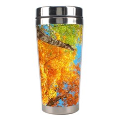 Colorful Leaves Sky Stainless Steel Travel Tumblers