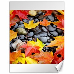 Colorful Leaves Stones Canvas 18  X 24